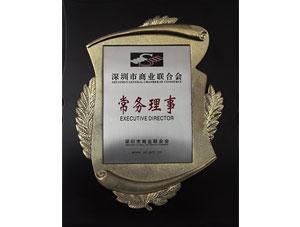 深圳市商业联合会常务理事